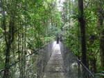(211'207) - Puente La Teciopelo im Mistico am 14.